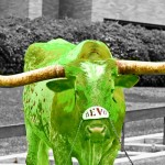 greenbevo-copy