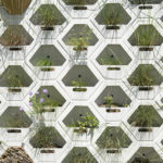 UT's First Living Wall is Built to Endure the Texas Summer