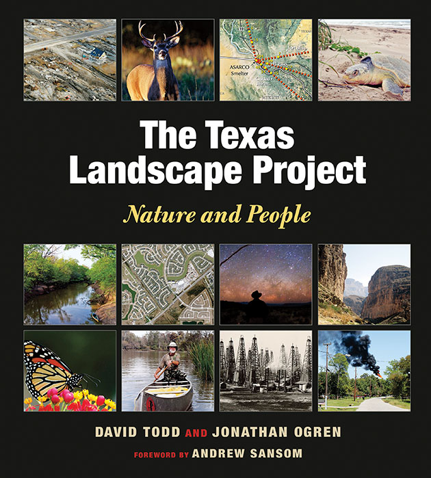 texas-landscape-project